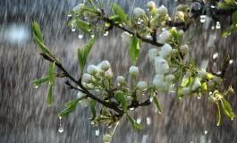 Повремени врнежи од дожд, силен ветер и пад на температурите