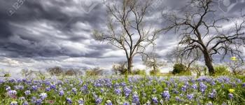 Облачно со врнежи од дожд и температури до 18 степени