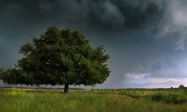 Променливо облачно време со температури до 19 степени
