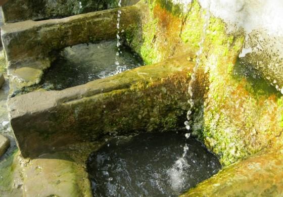 Минерлната вода во Проевце е небезбедна за пиење