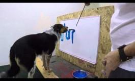 Кучето што научило да си го напише своето име (видео)