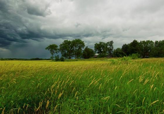 Сончево до умерено облачно со услови за локална нестабилност