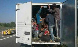 Царинската управа откри 13 мигранти кои се движат кон Куманово