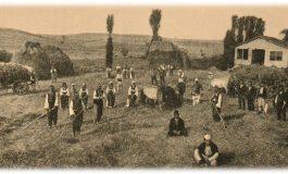 Чифчиски селски населби во Кумановскиот крај