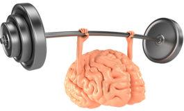 Како правилно да ја вежбате вашата меморија?