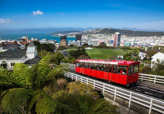 Нов Зеланд бара работници, нуди бесплатен пат и сместување