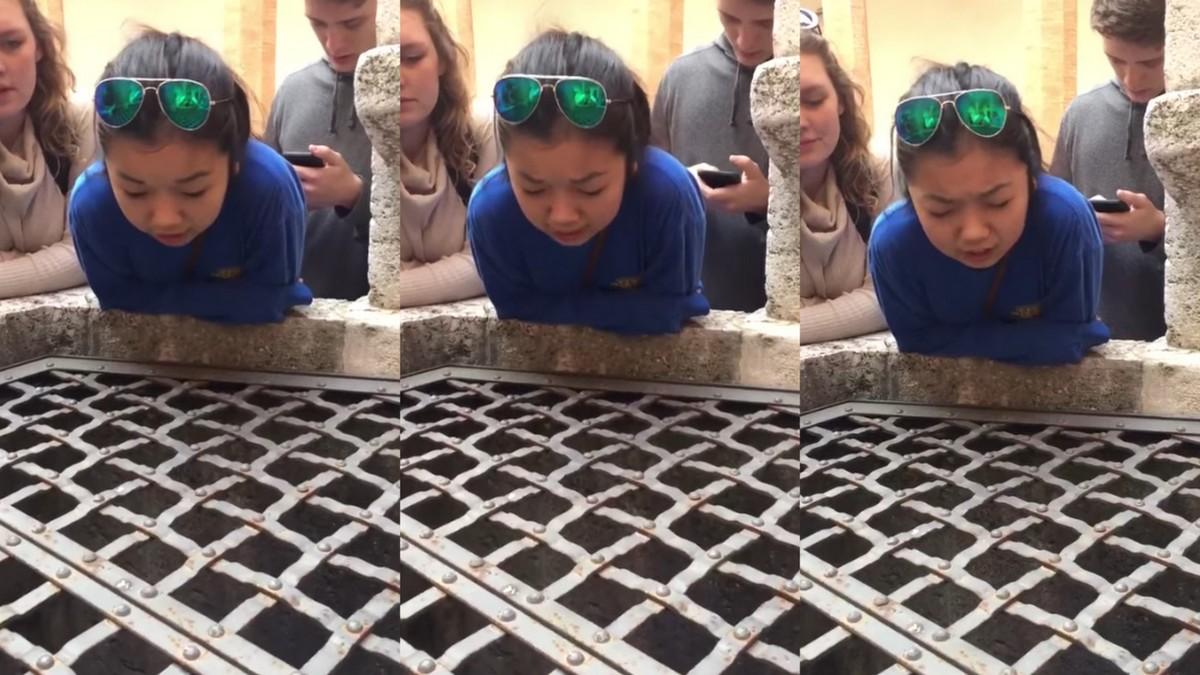 "Девојка ја пее песната ""Hallelujah"" во бунар и звучи нереално! (видео)"