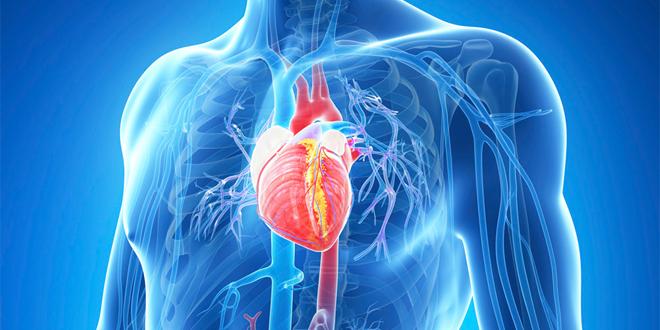 4 совети за здраво срце