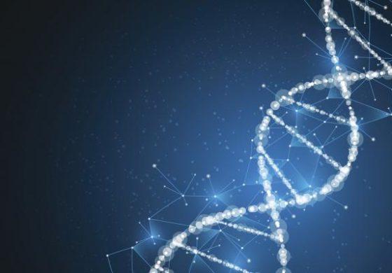 Научниците успешно генетски модификуваа човечки ембрион