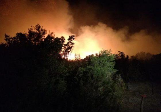 Ноќта донесе нови големи пожари во Црна Гора, се спуштаат кон куќите (фото+видео)