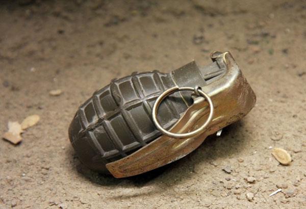 Во кал пронашол неексплодирана бомба