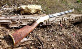 За да спречи кражба на дрва со пушка пукал кон автомобилот на крадците