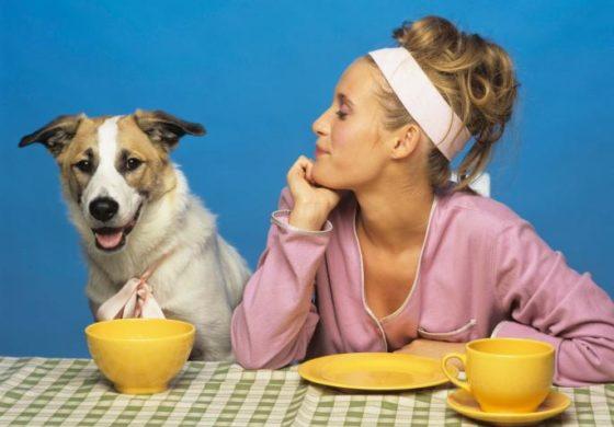 Овие намирници НИКАКО не смеете да му ги давате на вашето куче!
