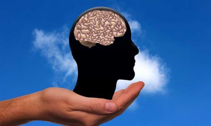 Пронајден начин за подобрување на работата на мозокот