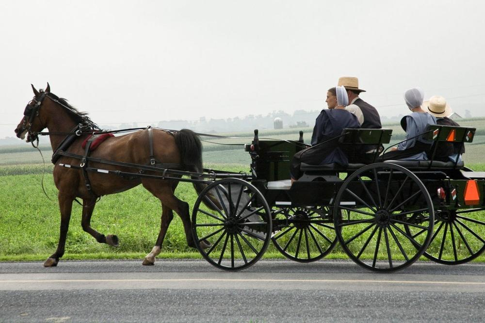 Научниците открија зошто Амишите живеат 10 години повеќе од останатите
