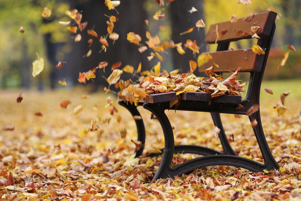 Значително опаѓање на температурите до крајот на неделава