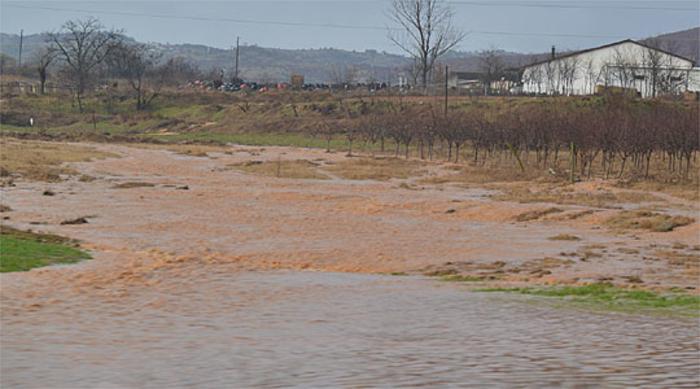 Драстично зголемени водотеците во Кривопаланечко, поплавена една куќа