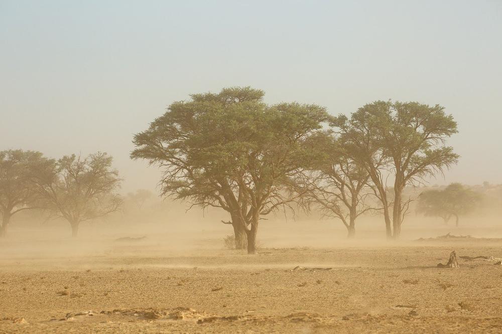 Сахара пристигнува во Европа: Ветровите ќе носат песок и прашина