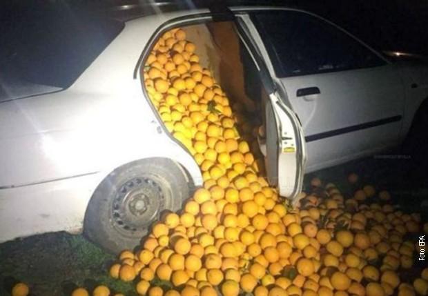 """""""КРАЖБА НА ВЕКОТ"""": Во Шпанија украле четири тони портокал (фото)"""