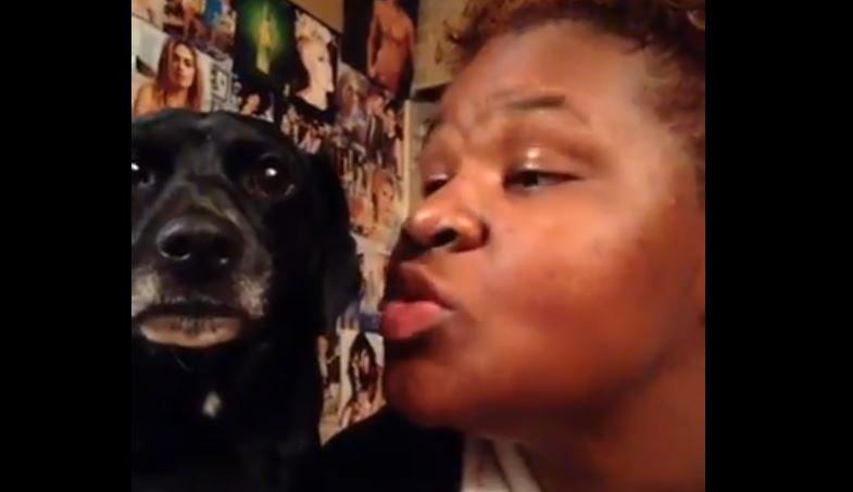 К'д куче не е превише расположено за селфи (видео)