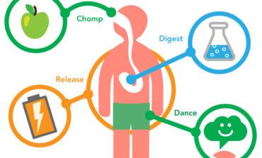 Што да правиме за добар метаболизам?