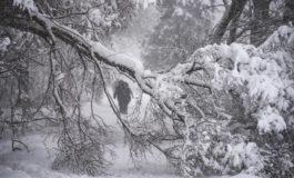 Москва се бори со снегот - 70.000 луѓе во акцијата за расчистување