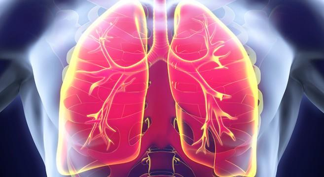 СЗО со нови препораки за превенција од туберкулоза