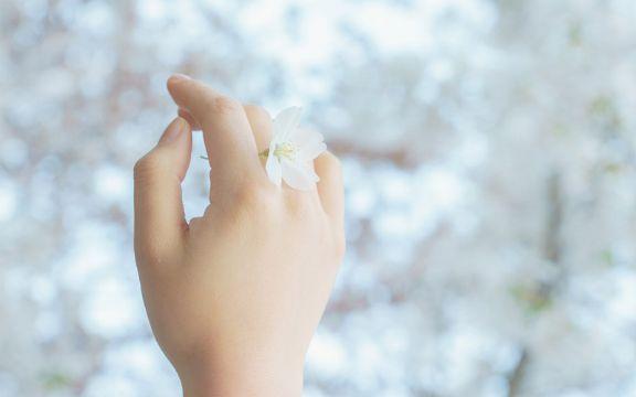 Што открива за вас должината на дланките