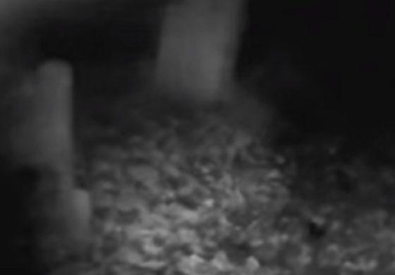 Заминал на гробишта да бара духови, а тогаш го снимил ова (ВИДЕО)
