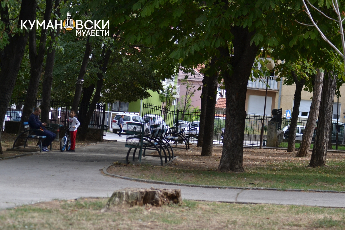 """Кумановскиот расадник на ЈП """"Македонски шуми"""" подготвен за престојната сезона за пошумување"""