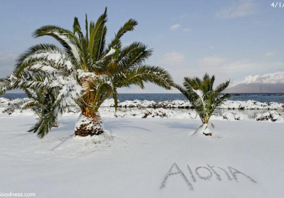 Снег ги затвори плажите во Хаваи