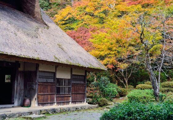 Во Јапонија им се повеќе напуштени куќи, се нудат бесплатно на интернет