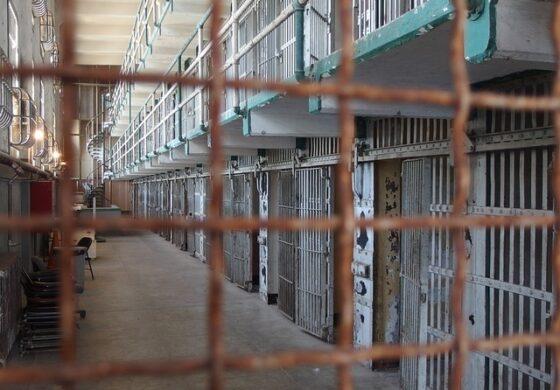 Украл камионетка за да на време се врати во затвор