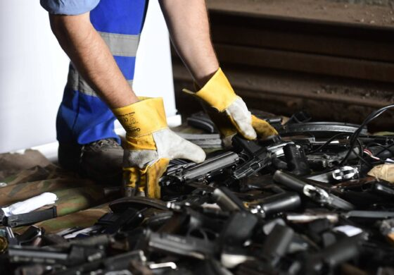 Уништени над 600 парчиња оружје и над 400 килограми дрога (ФОТО+ВИДЕО)
