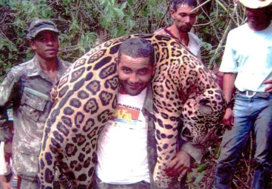 За три месеци направиле масакар меѓу животните (ВОЗНЕМИРУВАЧКА СОДРЖИНА)