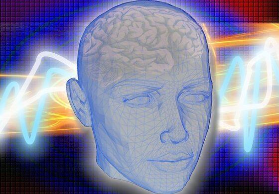 Како функционира мозокот кога мируваме? (ВИДЕО)