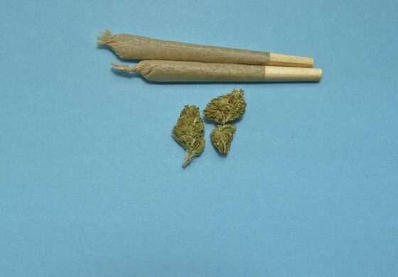 24-годишен кумановец ќе одговара за марихуана