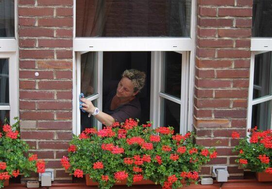 Три совети за беспрекорно чисти прозорци