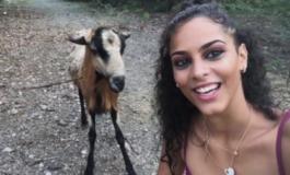"""Сакаше да направи """"селфи"""" со коза, но животното жестоко покажа дека не му се допаѓа идејата (ВИДЕО)"""