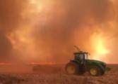 Зад пожарите во Амазонија се крие меѓународната глад за говедско и соја