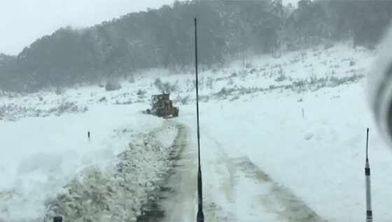 Австралија окована во снег и мраз (ФОТО)