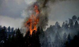 По три дена гаснење локализиран пожарот во Орашац
