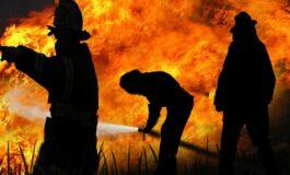 Грција ги апси пироманите: Приведени две лица