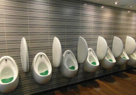 Британски град воведува анти-секс тоалети
