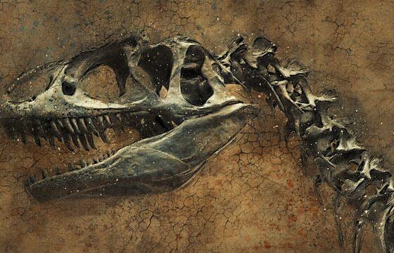 Во Јапонија откриен нов вид диносаоруси