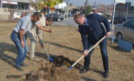 Куманово збогатено со нови садници, како мерка за почист воздух (ФОТО)