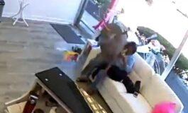 И еленот сака нова фризура: Заталкано животно влезе во фризерски салон (ВИДЕО)