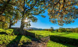 Свежи утра и раст на дневните температури
